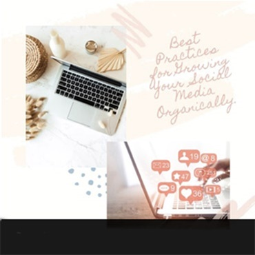 Growing your Social Media Organically